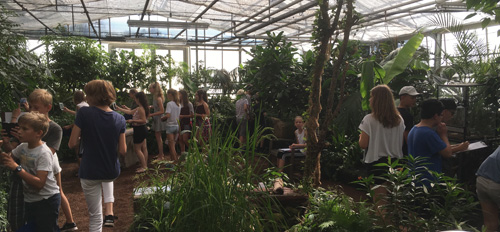 Schülerinnen und Schüler des GEOs bei den tropischen Schmetterlingen in der Botanika in Bremen.